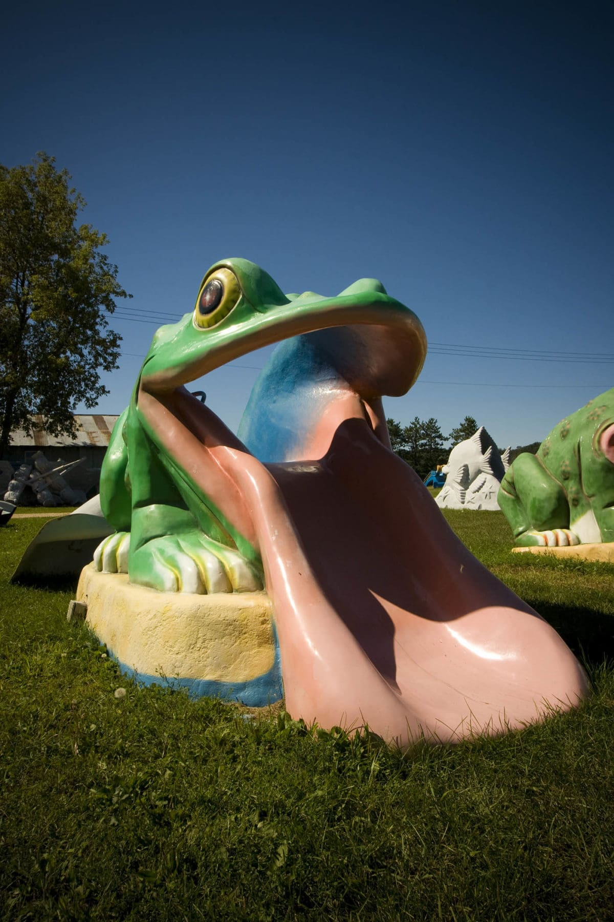 Finished fiberglass frog slide - Fast Fiberglass Animals, Shapes & Trademarks in Sparta, Wisconsin