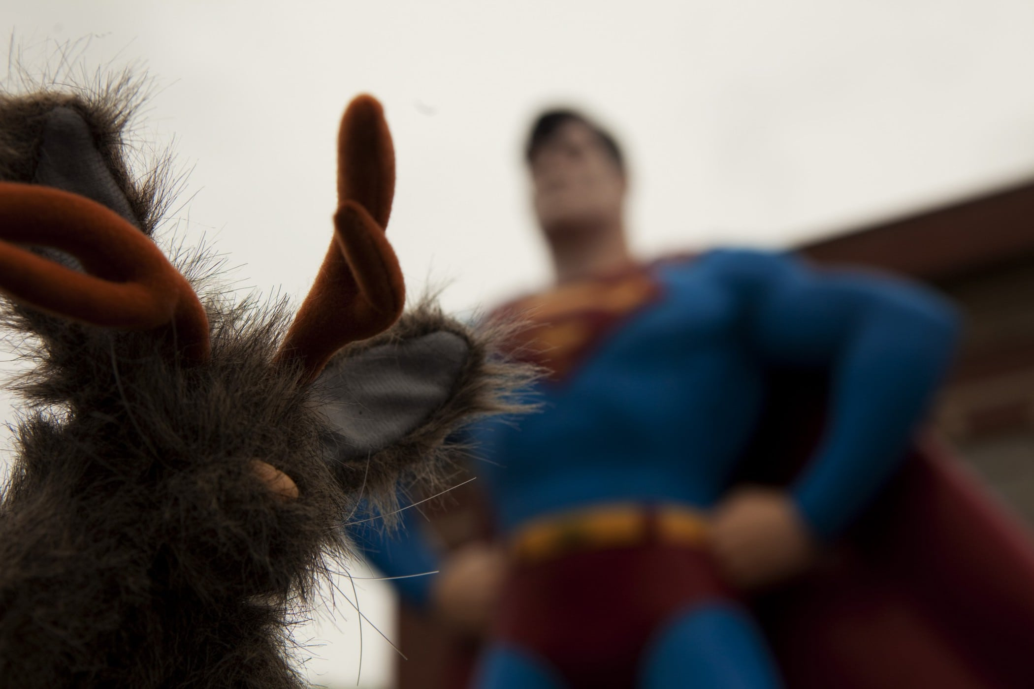 Flopsy the Jackalope with the Giant Superman statue, a roadside attraction in Metropolis, Illinois.