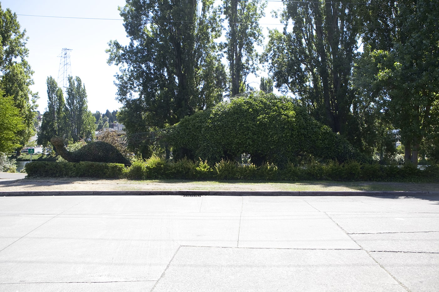 Dinosaur Roadside Attractions - Apatosaurus Dinosaur Topiaries in Fremont, Seattle
