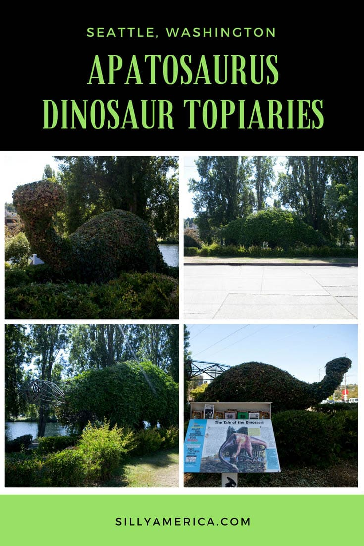 Photos of the Apatosaurus Dinosaur Topiaries in Seattle, Washington. These reptile-shaped hedges are found in the Fremont area of the city. Visit this weird roadside attraction on a Washington road trip or Seattle vacation. Add a stop in Fremont to you travel itinerary and bucket list. #WashingtonRoadsideAttractions #WashingtonRoadsideAttraction #RoadsideAttractions #RoadsideAttraction #RoadTrip #WashingtonRoadTrip #WashingtonBucketList #SeattleRoadTrip #SeattleTravel #WeirdRoadsideAttractions