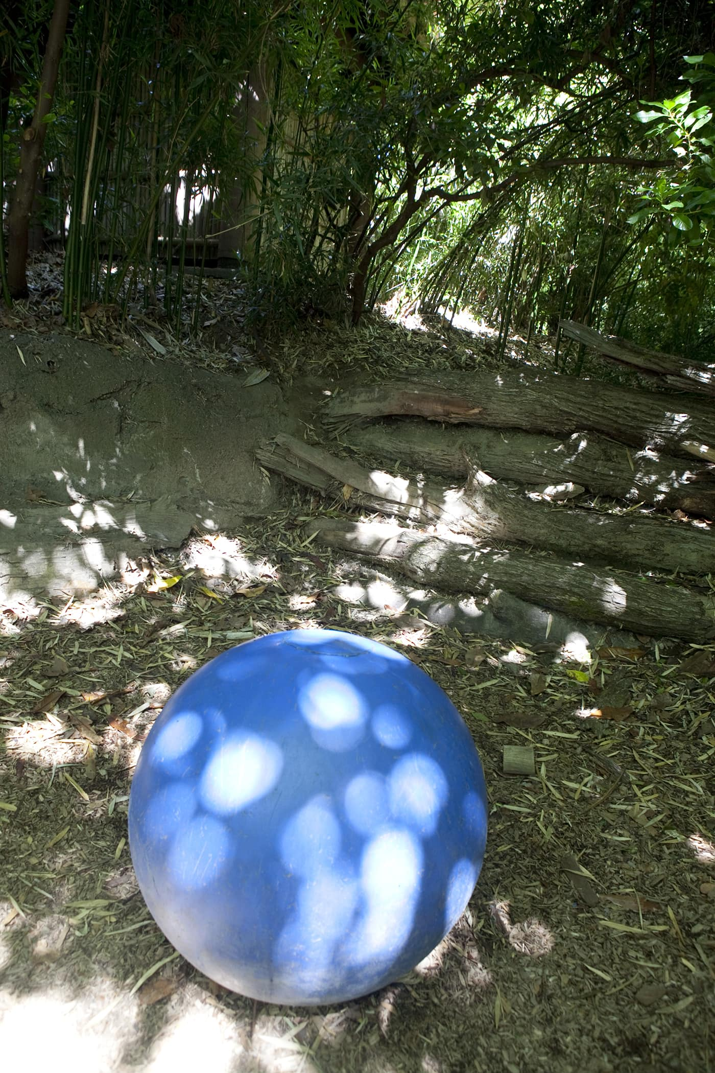 A big blue ball is a tribute to Hansa the elephant at Woodland Park Zoo in Seattle, Washington