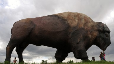 The World's Largest Buffalo, Jamestown, ND. One of the sites featured in the feature documentary World's Largest. www.worldslargestdoc.com