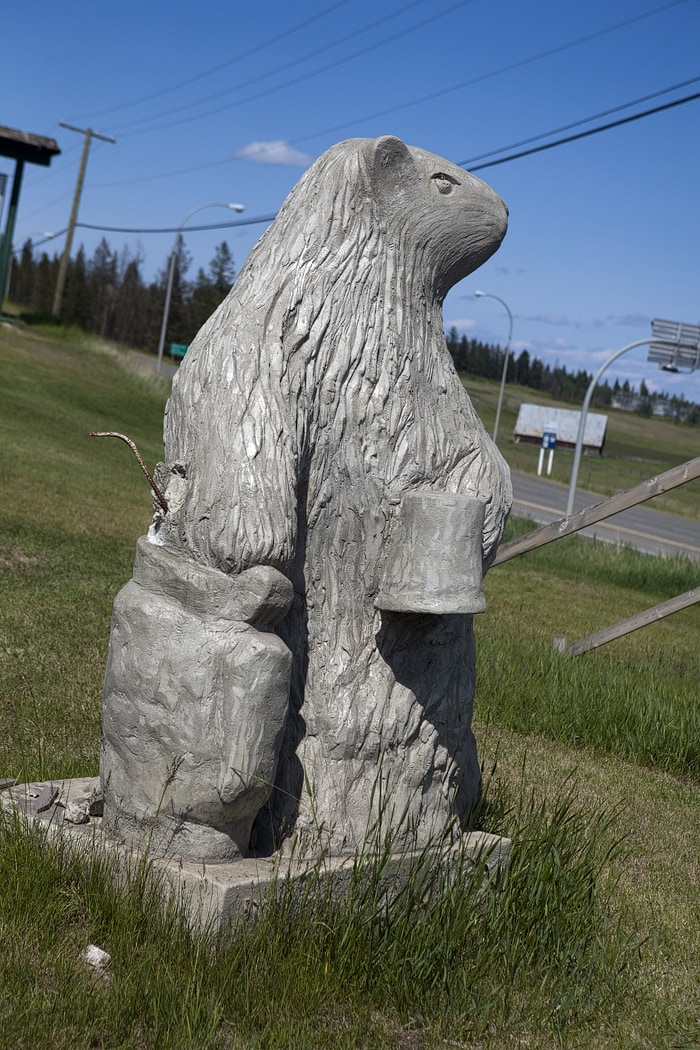 Big Marmot Statue in British Columbia