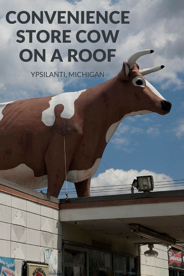 Convenience store cow on the roof of a drive through convenience store in Ypsilanti, Michigan. One giant brown and white holstein. Visit this weird roadside attraction on a Michigan road trip. Add the travel destination to your road trip map, bucket list, and itinerary of places to visit in Michigan.  #MichiganRoadsideAttractions #MichiganRoadsideAttraction #RoadsideAttractions #RoadsideAttraction #RoadTrip #MichiganRoadTrip  #WeirdRoadsideAttractions #RoadTripStops
