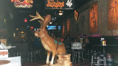Jackalope at Jackalope Bar & Grill in Austin, Texas