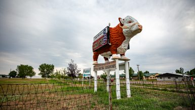 Giant Bull at the Eastern Montana Fairgrounds in Miles City Montana - Montana Roadside Attractions