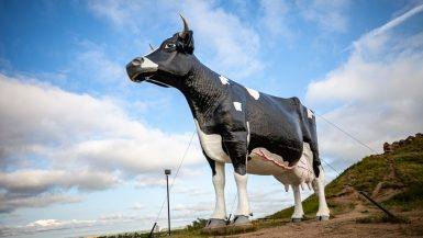 Salem Sue: The World's Largest Holstein Cow in New Salem, North Dakota | North Dakota Roadside Attractions