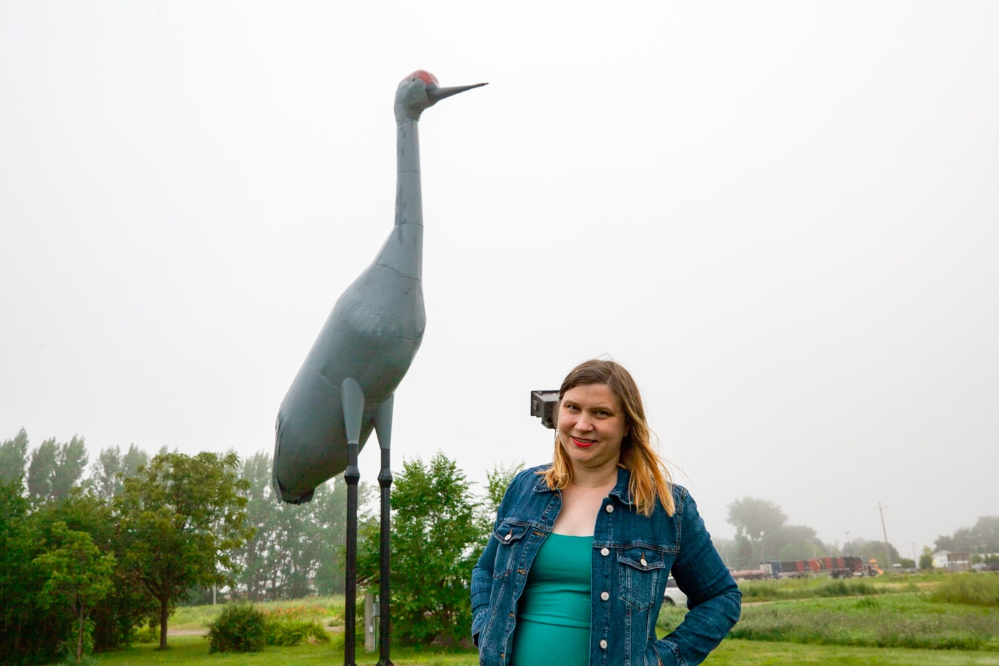 Sandy the World's Largest Sandhill Crane in Steele, North Dakota | North Dakota Roadside Attractions