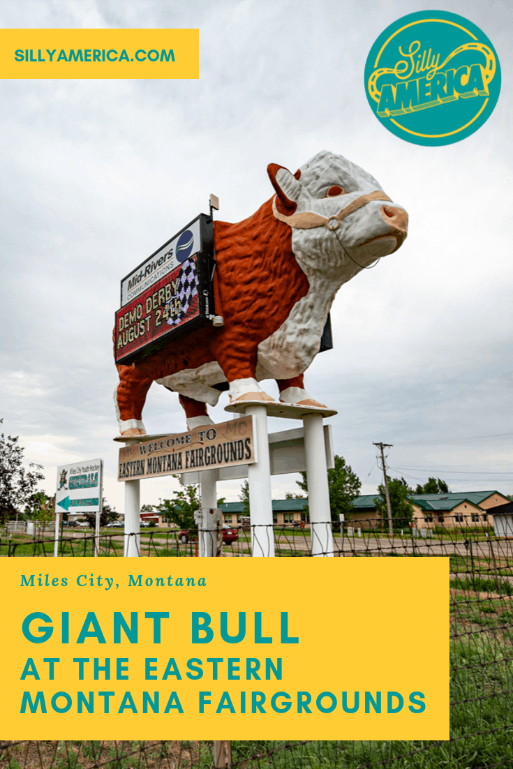 There's a giant bull at the entrance to the Eastern Montana Fairgrounds in Miles City, Montana that advertises events like the Eastern Montana Fai and more. Stop by this weird roadside attraction on a Montana road trip with kids or adults.  #MontanaRoadsideAttractions #MontanaRoadsideAttraction #RoadsideAttractions #RoadsideAttraction #RoadTrip #MontanaRoadTrip #MontanaRoadTripIdeas #MontanaWinterRoadTrip #MontanaRoadTripWithKids #WeirdRoadsideAttractions #RoadTripStops