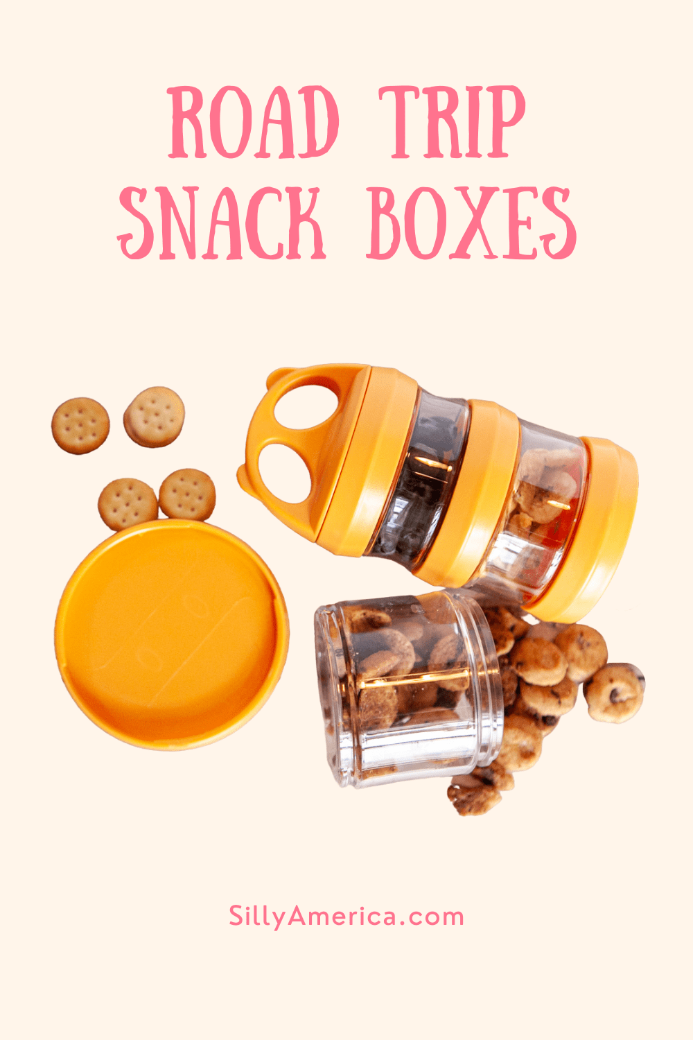 Road trip snack boxes are a fun way to get nourishment throughout the day on long car rides. Pack road trip snacks on your adventure for a fun and healthy treat for kids, teens, and adults. How do you make one? And what snacks should you use? Read on! #RoadTripSnacks #RoadTripSnacksForAdults #Healthy#RoadTripSnacks #RoadTripSnacksForKids #RoadTripSnacksTeens #RoadTripSnacks #EasyRoadTripSnacks #RoadTripSnacksIdeas #RoadTripSnacksList #FamilyRoadTripSnacks